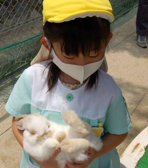 幼稚園に動物たちがやってきました!